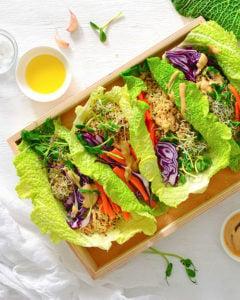vegan-240x300 san diego restaurant week